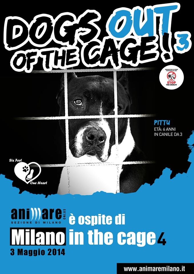 dogs-out-of-the-cage_01